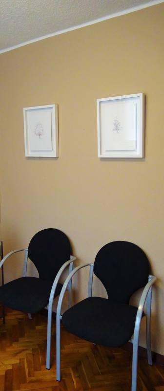 centro bioarmony sala estar