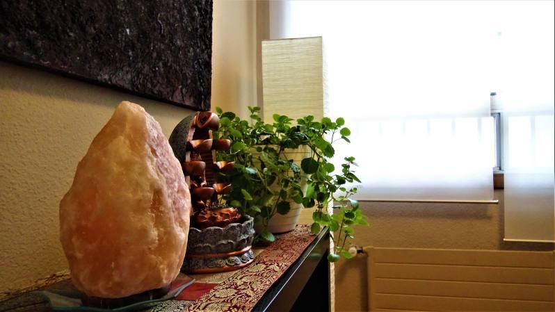 centro bioarmony decoración